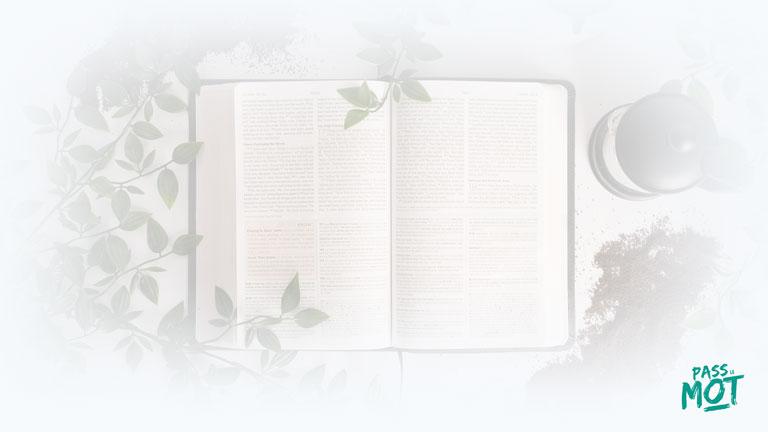 """""""Seigneur, tu es pour moi une lampe, oui, Seigneur, tu éclaires la nuit où je suis"""" (2S 22.29). Confie-toi en Lui et tu ne seras jamais dans le noir. PassLeMot"""